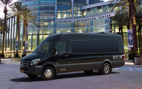 Executive Sprinter Van